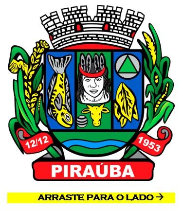 RESULTADO DE PROCESSO SELETIVO PÚBLICO/CADASTRO DE RESERVA N°. 01/2021 - SECRETARIA MUNICIPAL DE SAÚDE DE PIRAÚBA - MG